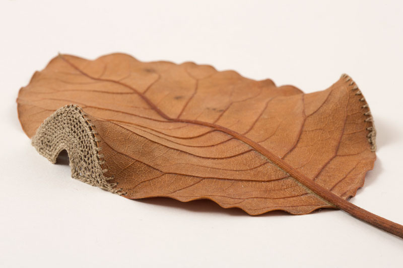 3d leaf crochet by susanna bauer (11)