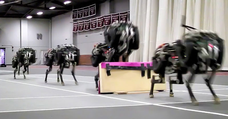Autonomous MIT Cheetah Robot Lands First-Ever Running Jump