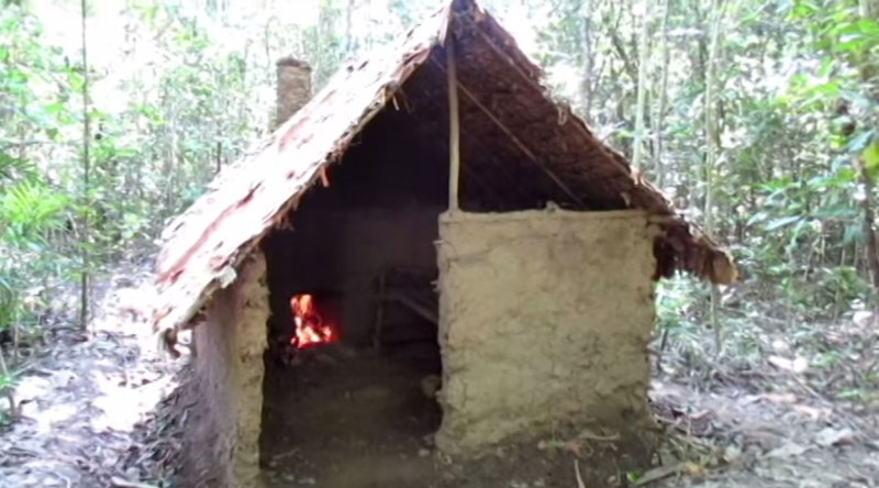 Guy Builds Impressive Hut in the Middle of the Woods with His Bare Hands