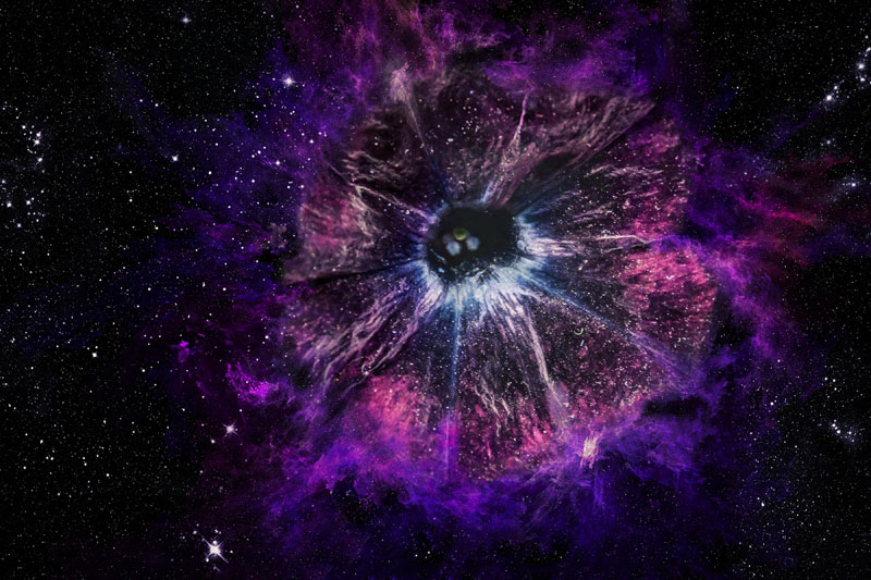 the flower inside a galaxy Picture of the Day: The Galaxy Inside a Flower