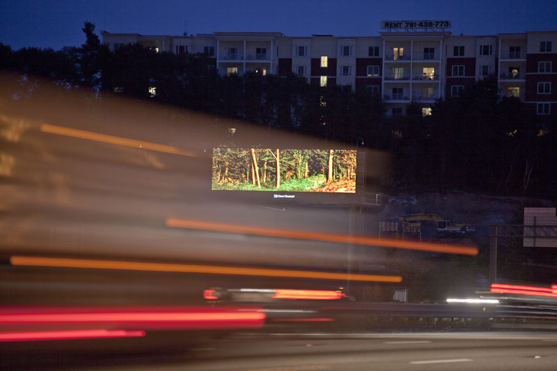 brian kane Buys Digital Billboard Space to Display Nature Photos (2)