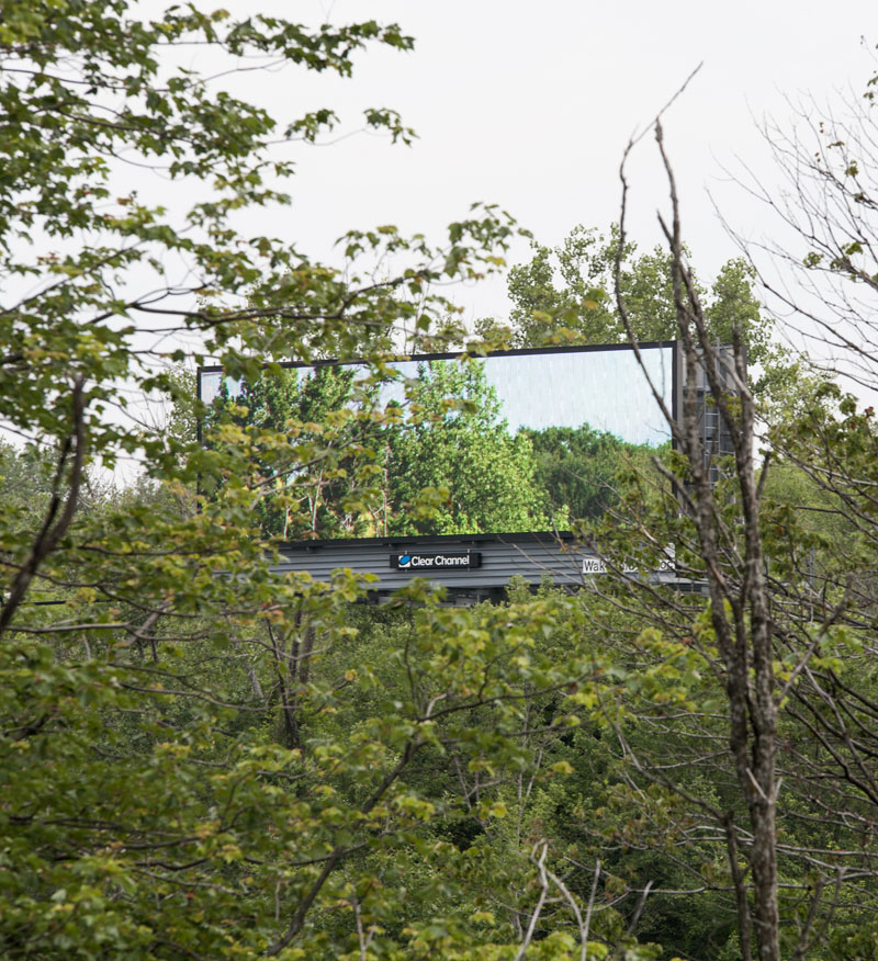 brian kane Buys Digital Billboard Space to Display Nature Photos (3)