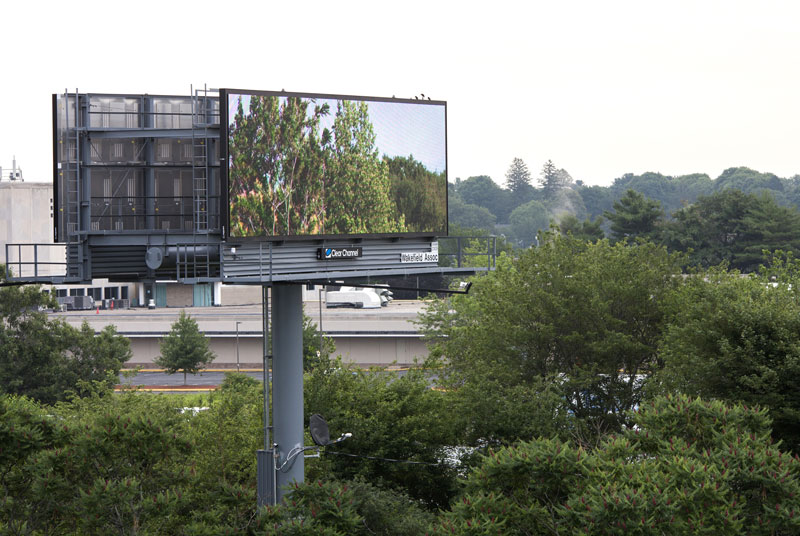 brian kane Buys Digital Billboard Space to Display Nature Photos (4)
