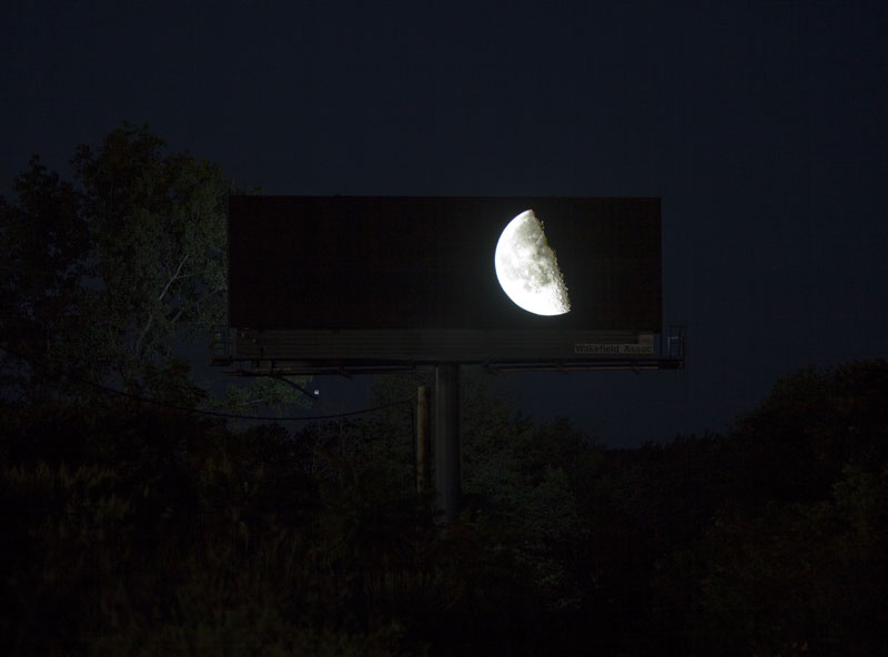 brian kane Buys Digital Billboard Space to Display Nature Photos (5)