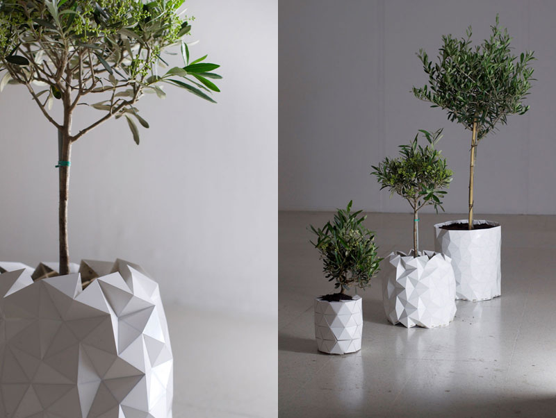 flower pot grows as plant does growth by studio ayaskan (5)