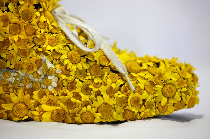 nike shoes made out of plants chrstophe guinet monsieur plant (1)