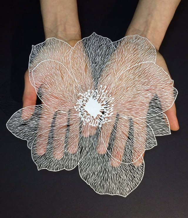 paper art by maude white (11)