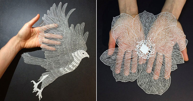 Paper plants and animals cut by hand with a surgical knife for Top knife the art craft of trauma surgery