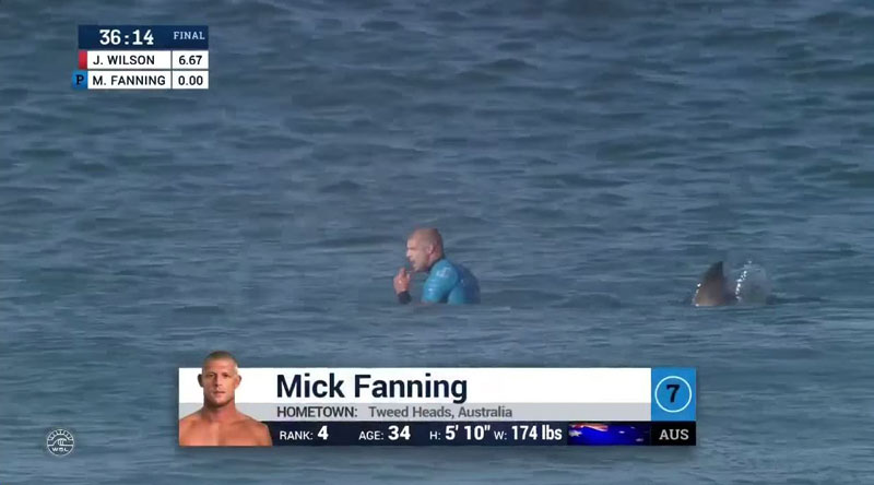 Shark Attacks Mick Fanning at J-Bay Open Finals
