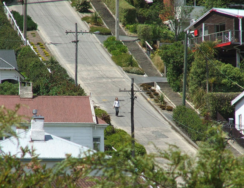 steepest residential street in the world baldwin street dunedin new zealand guiness world record (2)