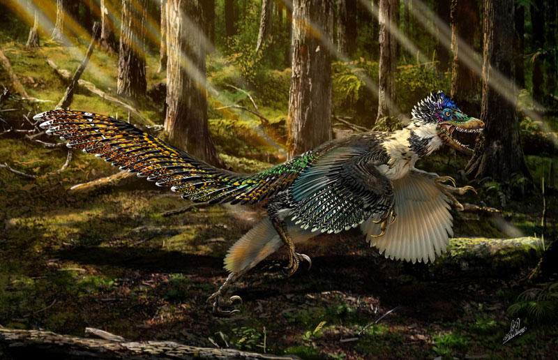125 Million-Year-Old Dinosaur with Wings Found Perfectly Preserved, is Ancestor to the Velociraptor