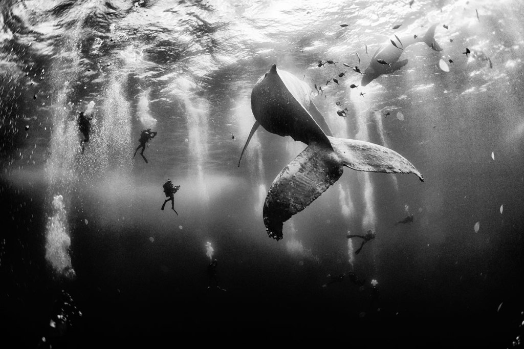 The Winners of the 2015 Nat Geo Traveler Photo Contest