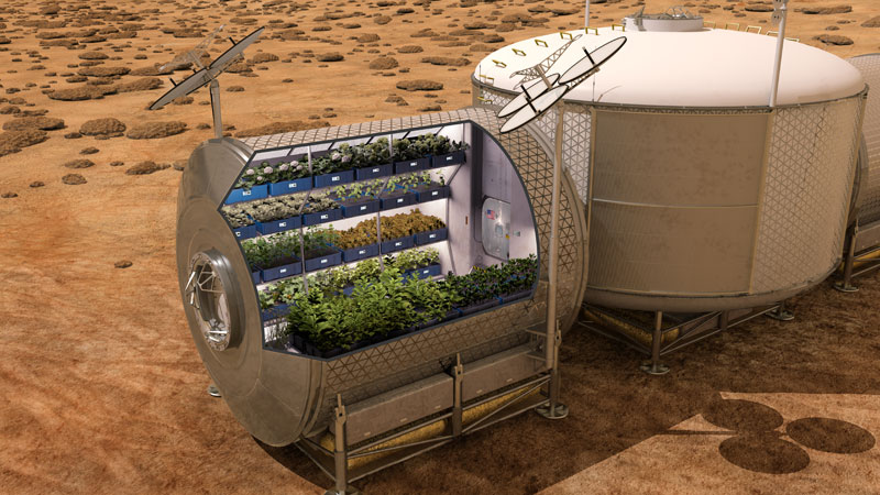 astronauts on iss eat veggies grown in space (3)