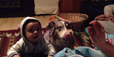 Mom Offers Son a Treat If He Can Say 'Mama', Hungry Dog Says ItInstead