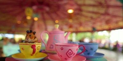 Tiny Hamster Goes to DisneyWorld