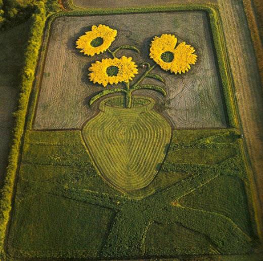 land crop art by stan herd (3)
