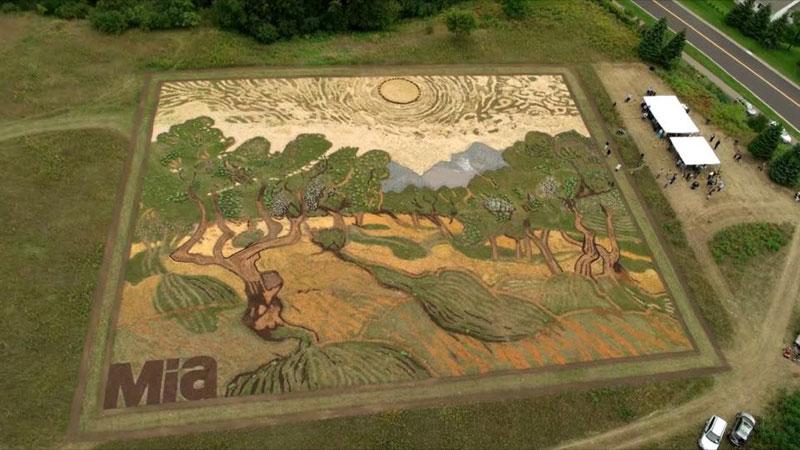 land crop art by stan herd (5)
