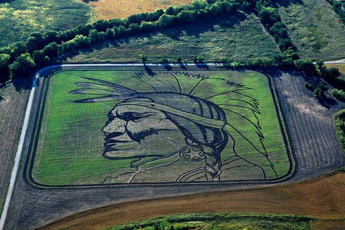 land crop art by stan herd (6)