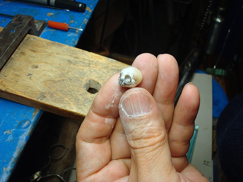 pearl skulls by shinki nakaba (16)