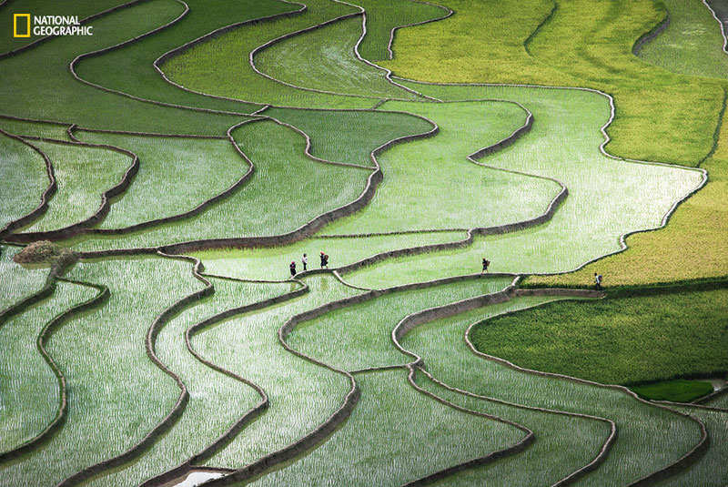 Terrace paddies in North Vietnam