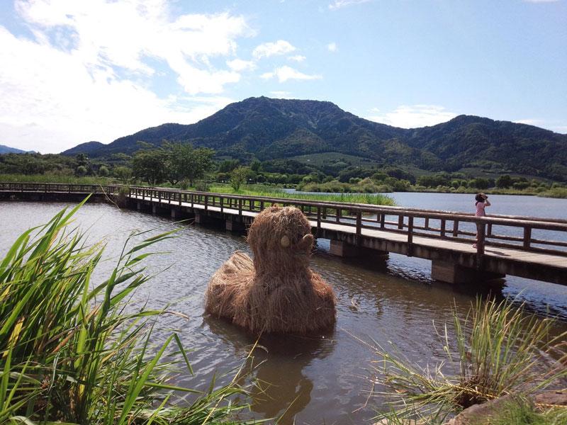 straw art festival niigata city japan (19)