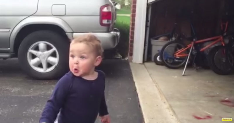 Automatic Garage Door Blows Toddler S Mind 171 Twistedsifter
