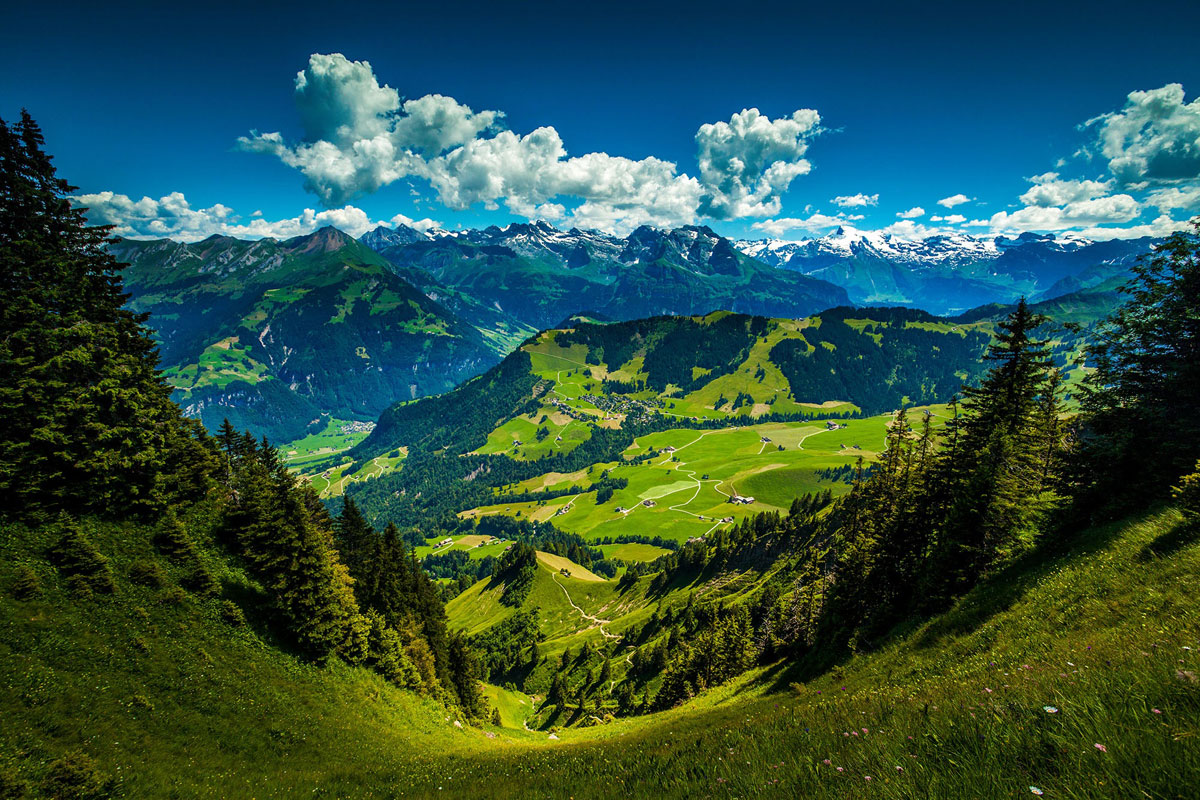 Picture Of The Day Atop The Stanserhorn In The Swiss Alps