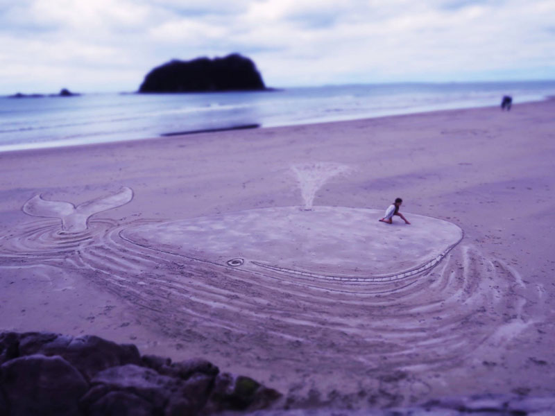 Picture Of The Day 3d Beach Whale Sand Art 171 Twistedsifter