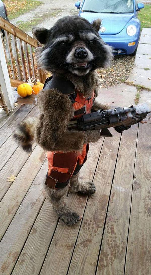 15 Awesome Halloween Costumes from this Past Weekend «TwistedSifter