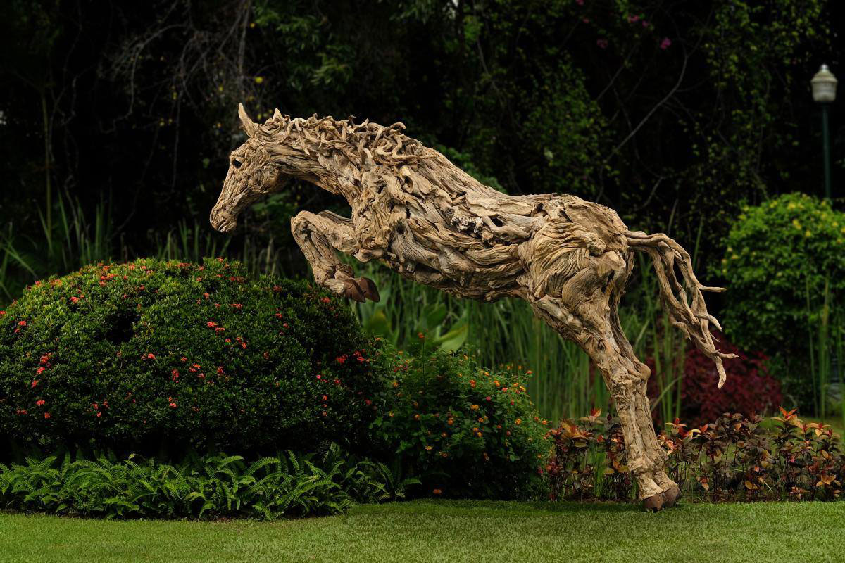 Picture of the day leaping driftwood twistedsifter Driftwood sculptures for garden