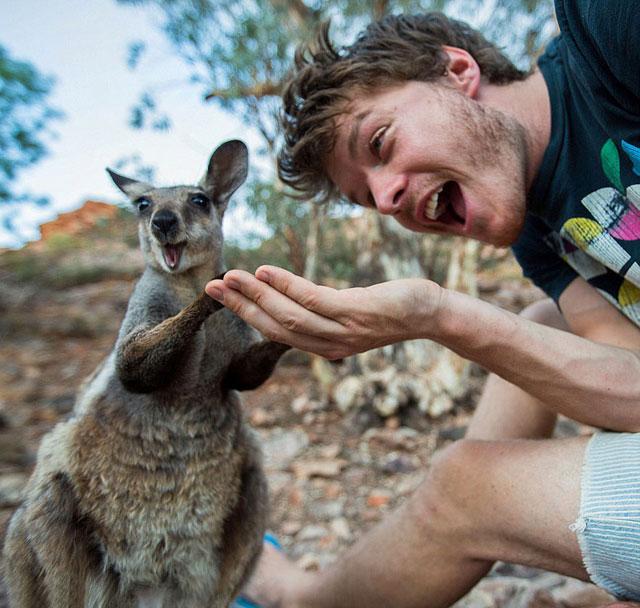 allan dixon animal selfies (8)