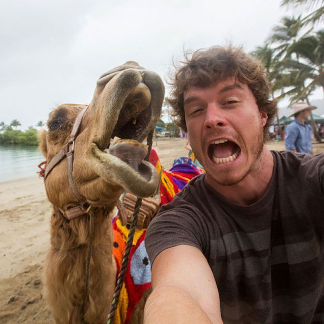 allan dixon animal selfies (9)