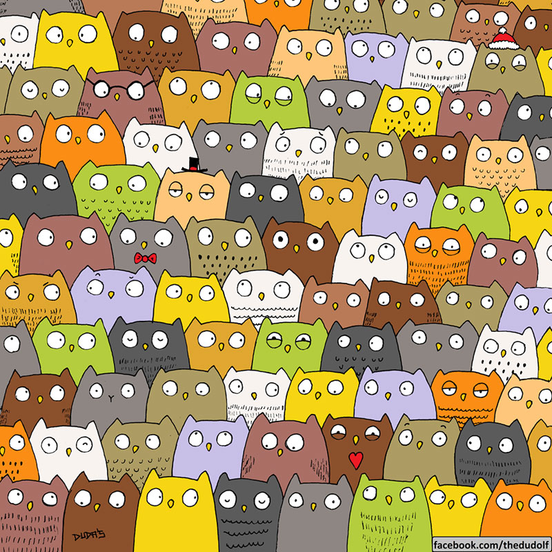 can you spot the cat in this owl pic by dudolf