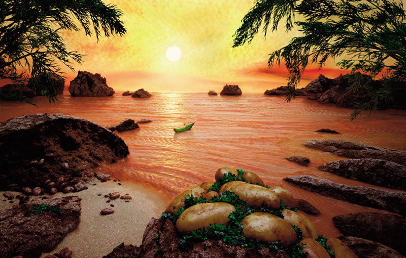 carl warner makes landscapes out of anything (14)