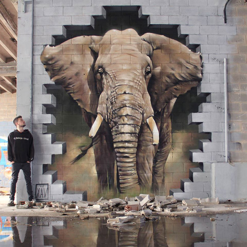elephant street art graffiti by xav Picture of the Day: Breaking Through