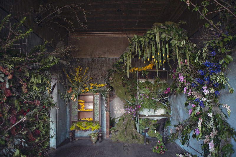 flower house detroit photography by heather saunders (7)