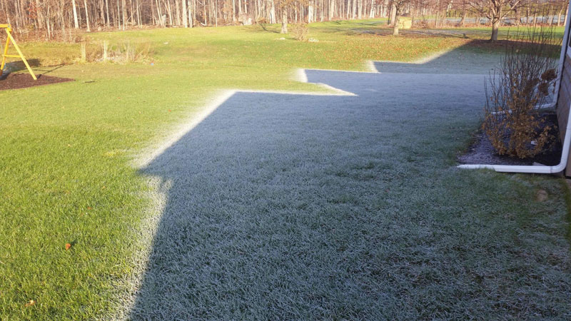 morning frost shadow Picture of the Day: Morning Frost Shadow