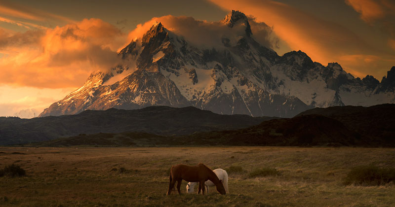 Picture of the Day: Patagonia Dreaming