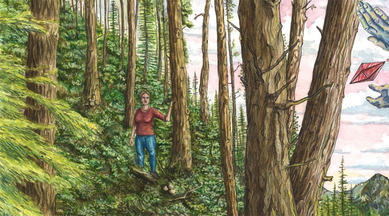 the woods timelapse illustration by jake lockett (7)