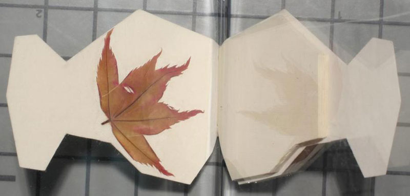 unt library miniature book collection (16)