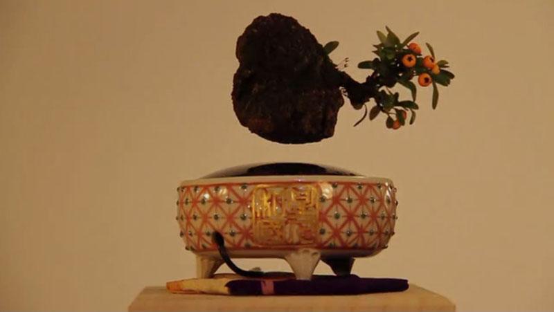 floating air bonsai by hoshinchu on kickstarter (10)