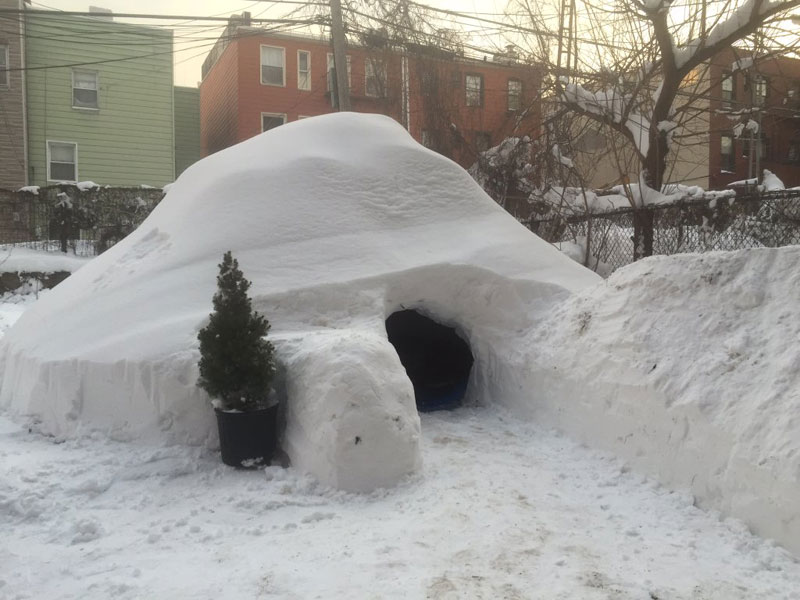 guy builds igloo lists on airbnb for 200 brooklyn new york (2)
