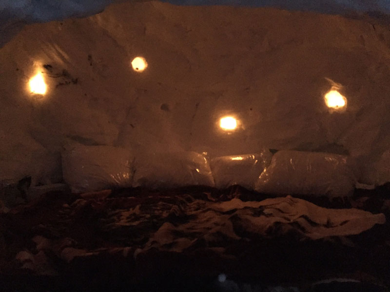 guy builds igloo lists on airbnb for 200 brooklyn new york (6)