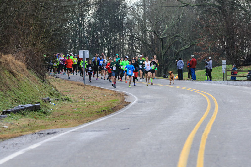 ludivine hound dog runs half marathon comes 7th alabama (2)