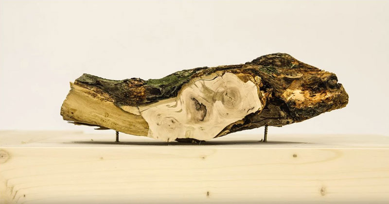 Surreal Stop Motion Timelapse of Objects Being Sanded in Half