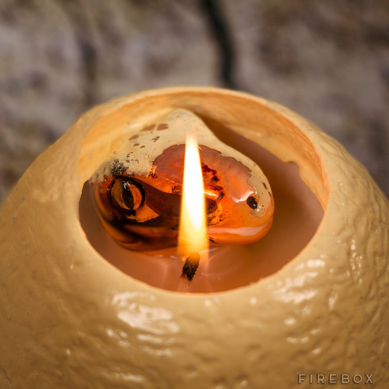 hatching dinosaur candle (2)