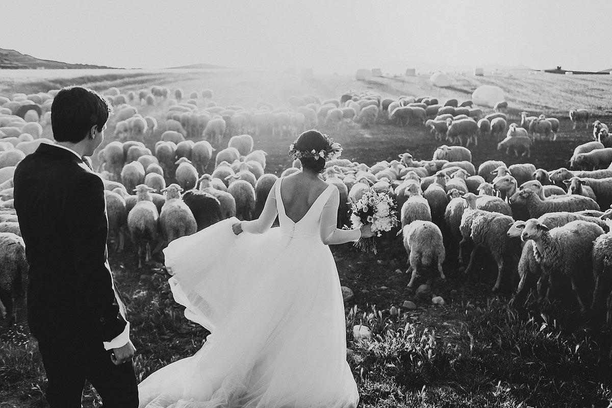 People-Producciones-Best-Wedding-Photo-2015