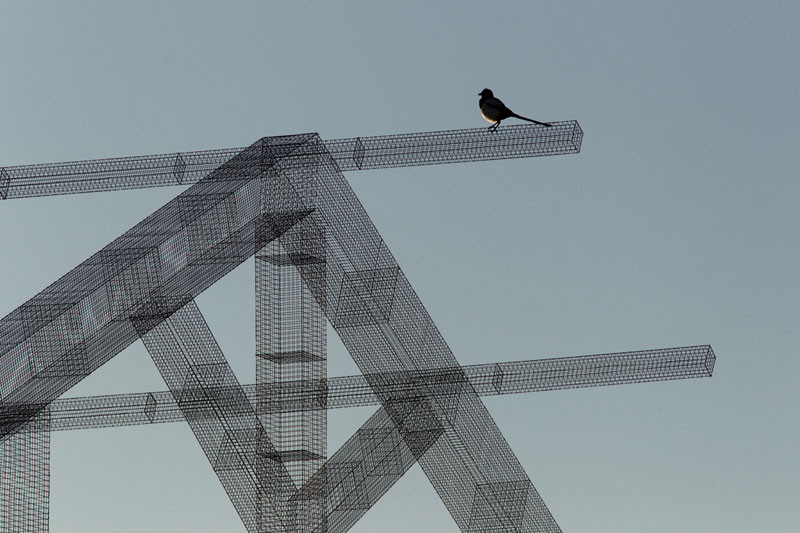 edoardo tresoldi wire mesh building (6)