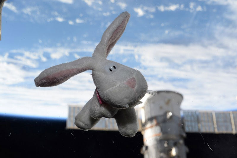happy easter from space scott kelly iss bunny rabbit Picture of the Day: Happy Easter from Space