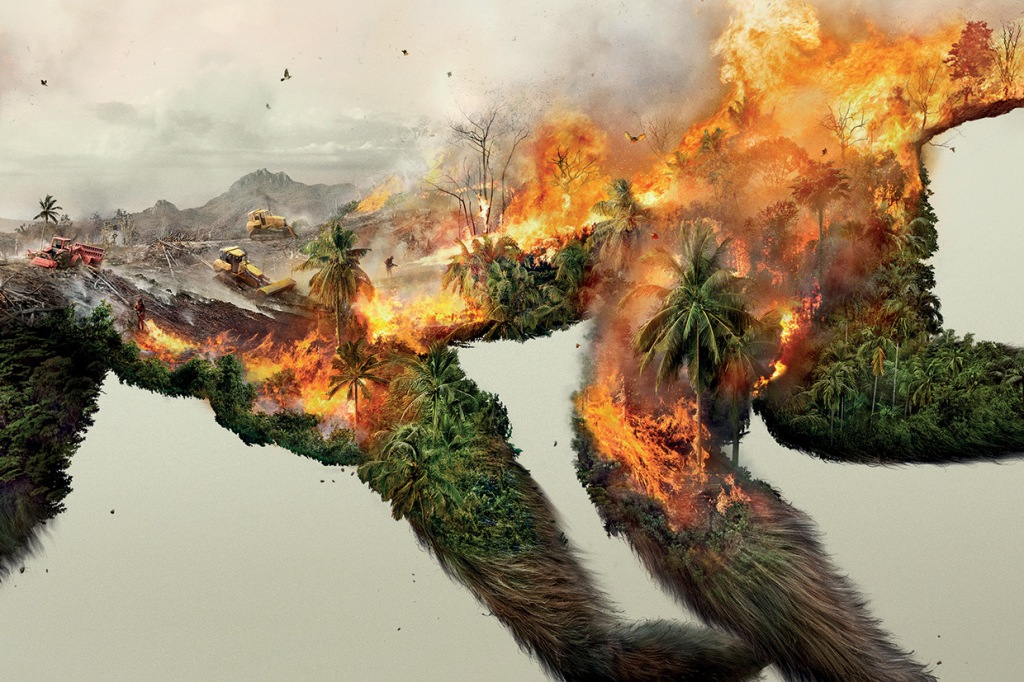 Illustrations Show How Destroying Nature Destroys Life (3)